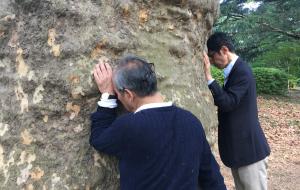 新宿御苑森林瞑想福田ゴンベイ